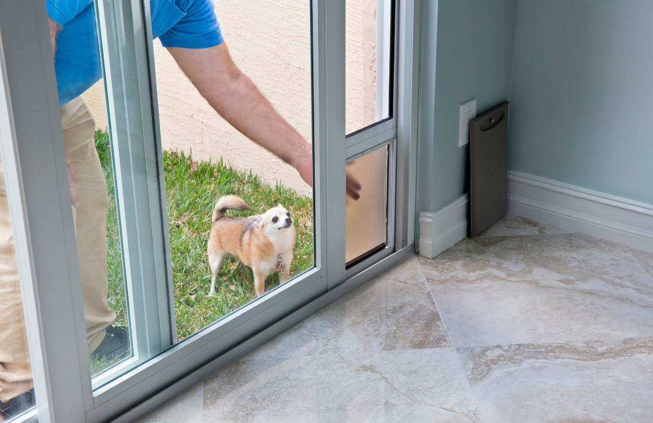 Doggy Doors: Can I just get a hole put in the existing glass?
